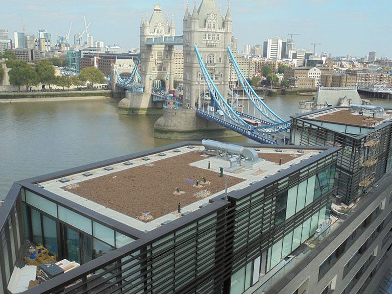 Flat Roof Bridges : Case study one tower bridge fenland flat roofing